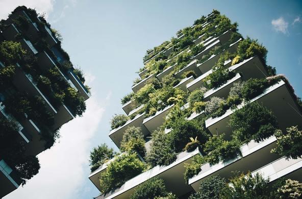 Грант: Конкурс городов будущего от ЮНЕСКО