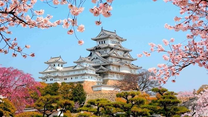 Грант на исследования в Японии от организации Matsumae International Foundation 2018
